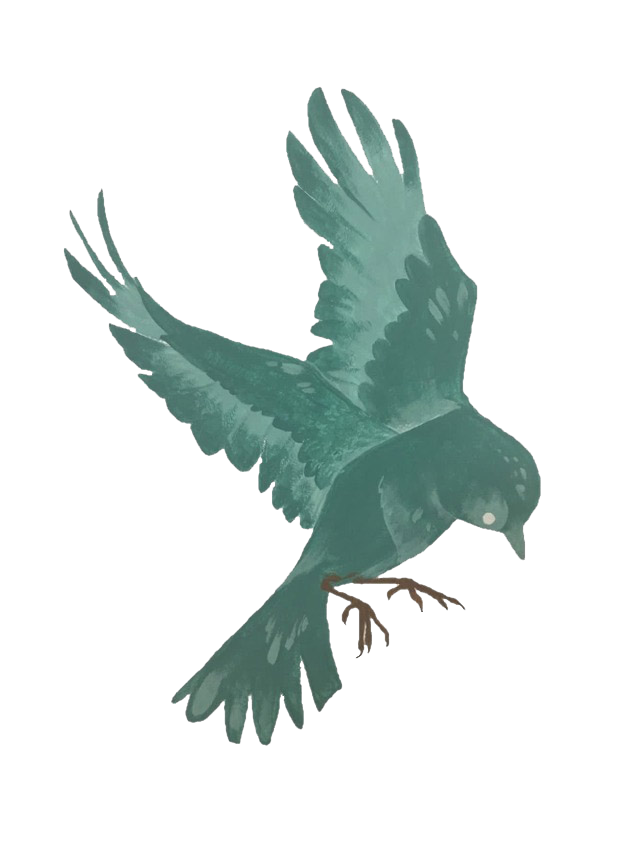 Птичка Polverol