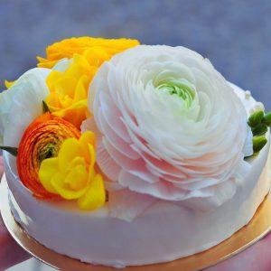 Торт Муссовый Клубнично-йогуртовый вариант 1 в Polverol Киев